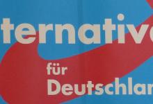 AfD-Richtungsstreit: Schatzmeister Piet Leidreiter zurückgetreten