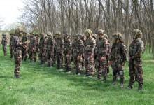Ungarische Armee erhält Polizeibefugnisse zur Bewältigung des Asyl-Ansturms