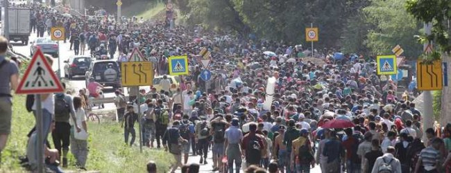 Wegen Corona und illegaler Zuwanderung: FPÖ-Kickl fordert Komplett-Aussetzung des Asylrechts