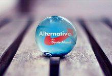 AfD-Parteitag in Braunschweig: Curio kündigt Kandidatur für den Vorsitz an