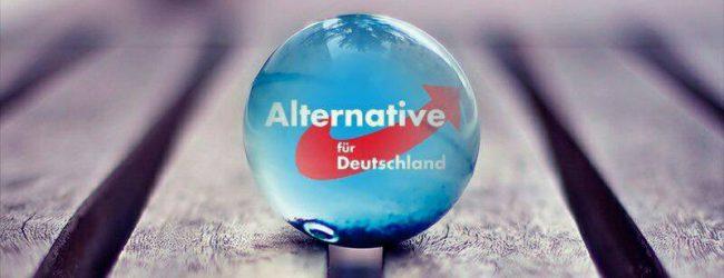"Thüringer AfD verabschiedet Wahlprogramm: ""Verabschiedungskultur"" statt Willkommenskultur"