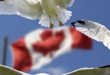 Sand im Getriebe der Globalisierer: Van der Bellen unterschreibt CETA nicht