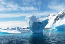 """BDI-Chef widerspricht der Klimapolitik der Bundesregierung: """"Magisches Denken"""""""