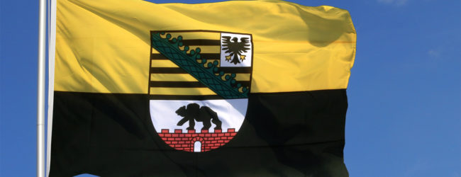 """Partei """"Die Basis"""" ficht Landtagswahl in Sachsen-Anhalt an: """"Hier stimmt etwas nicht"""""""