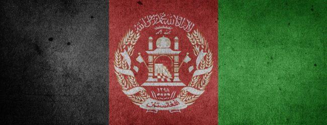 Schlecht für die westlichen Werte, gut für die Gesundheit: Taliban wollen Mohnanbau verbieten